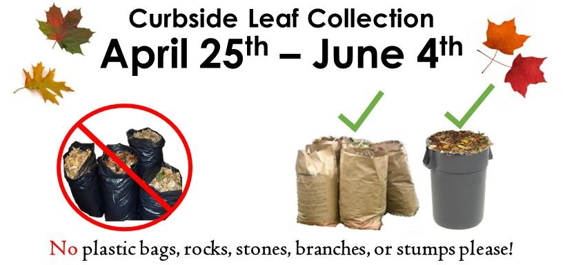 Bald Hill and Leaf Collection Information